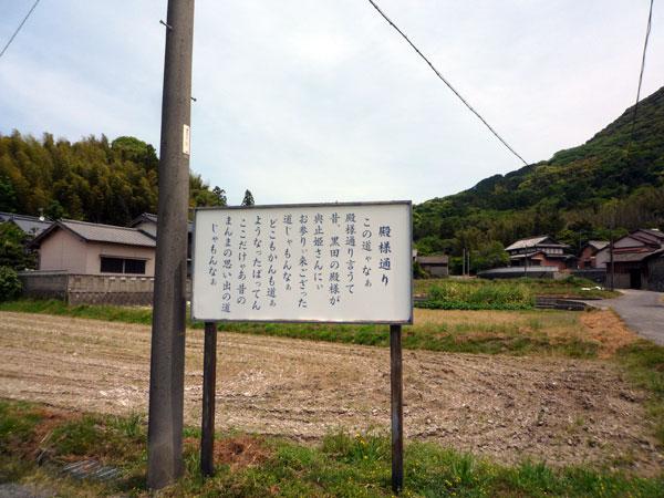 桜井の殿様通り