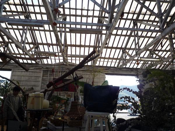 ドーバー 天井